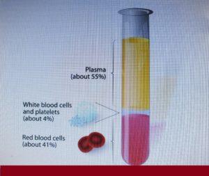 Sport medicine: PRP for speedy wound healing