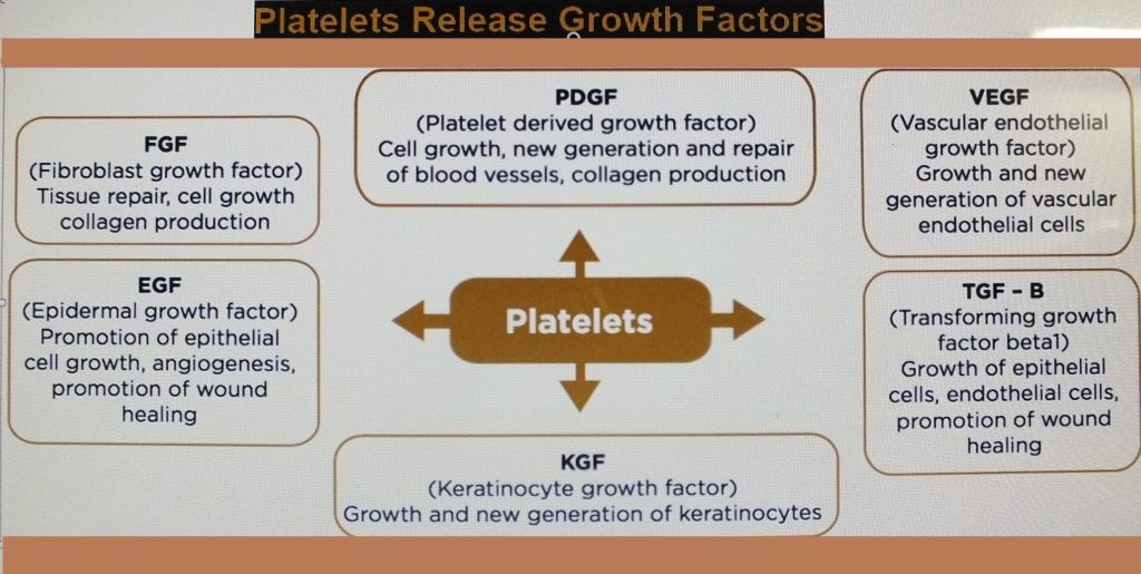Platelet growth factors released by platelet brings about robust speedy wound repair