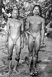 Genital Piercing Two Kenyah-Dajaks (with an Ampallang-piercing) - Borneo, 1920 ″The young men through the tattoo, because it is performed by them only to a limited extent, much less than women to suffer for it but they must in order to gain their full manhood, subject of another test, namely the through-hole the glans penis.